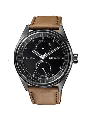 Citizen Metropolitan